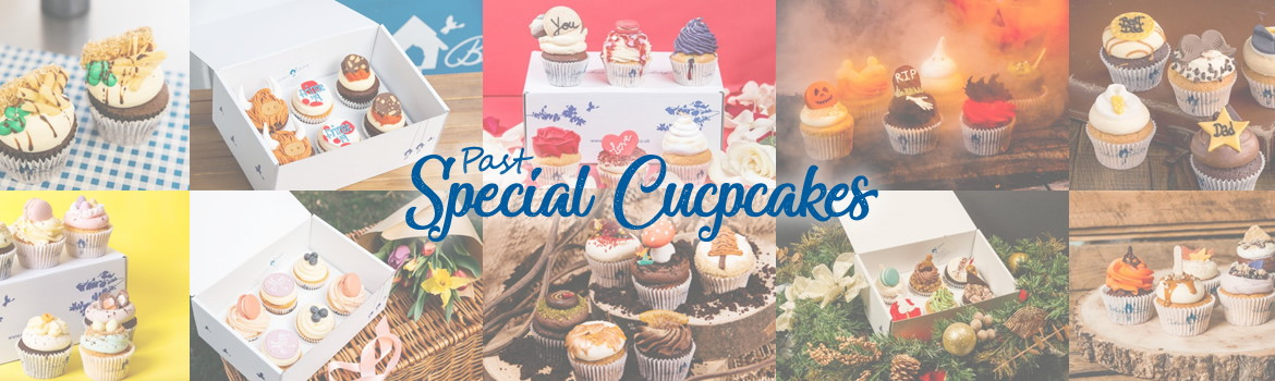 Past Special Cupcakes
